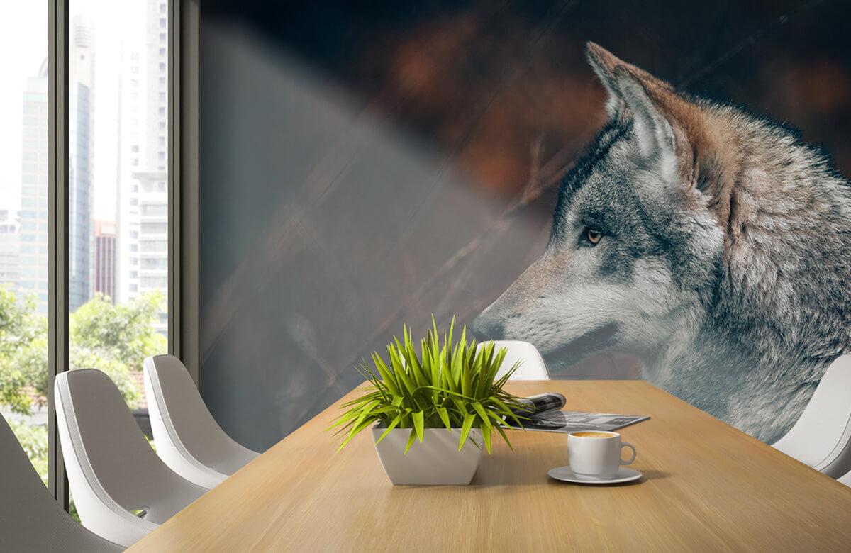wallpaper Wolf 7