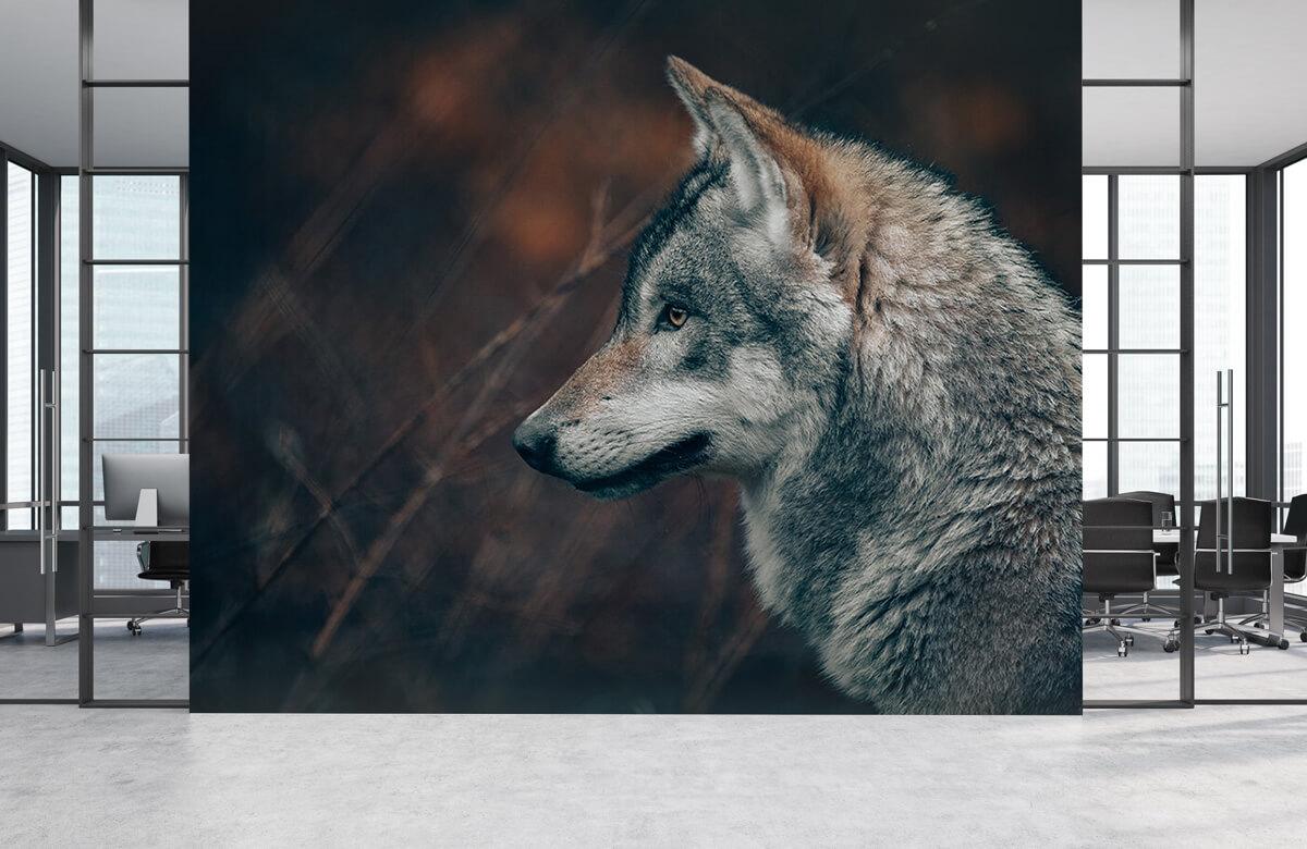 wallpaper Wolf 2