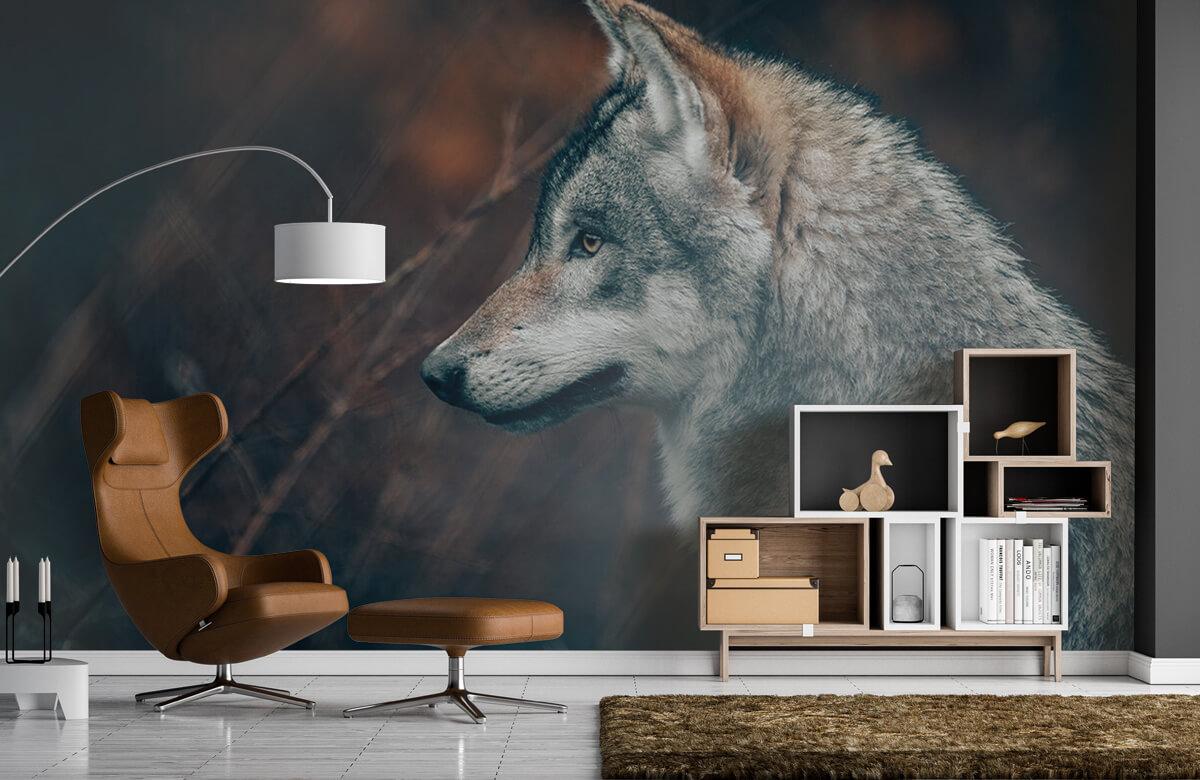 wallpaper Wolf 5