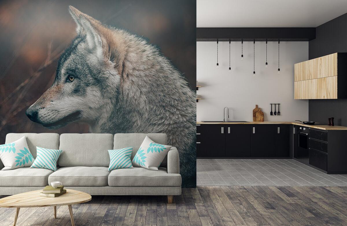 wallpaper Wolf 9