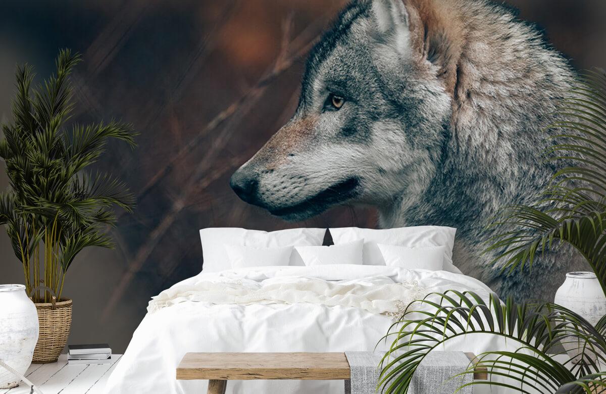 wallpaper Wolf 4