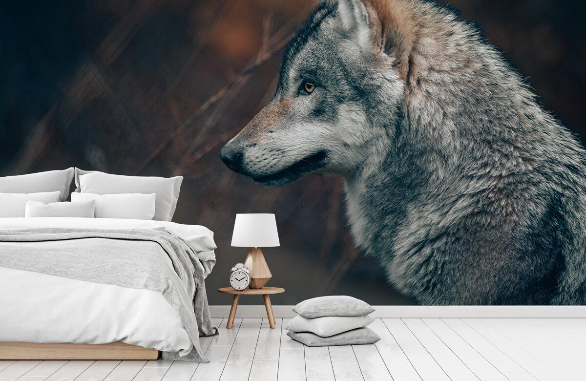 wallpaper Wolf 11