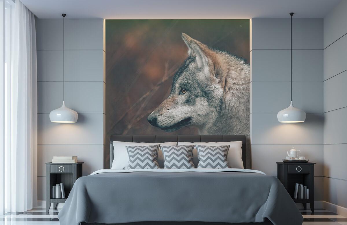 wallpaper Wolf 1