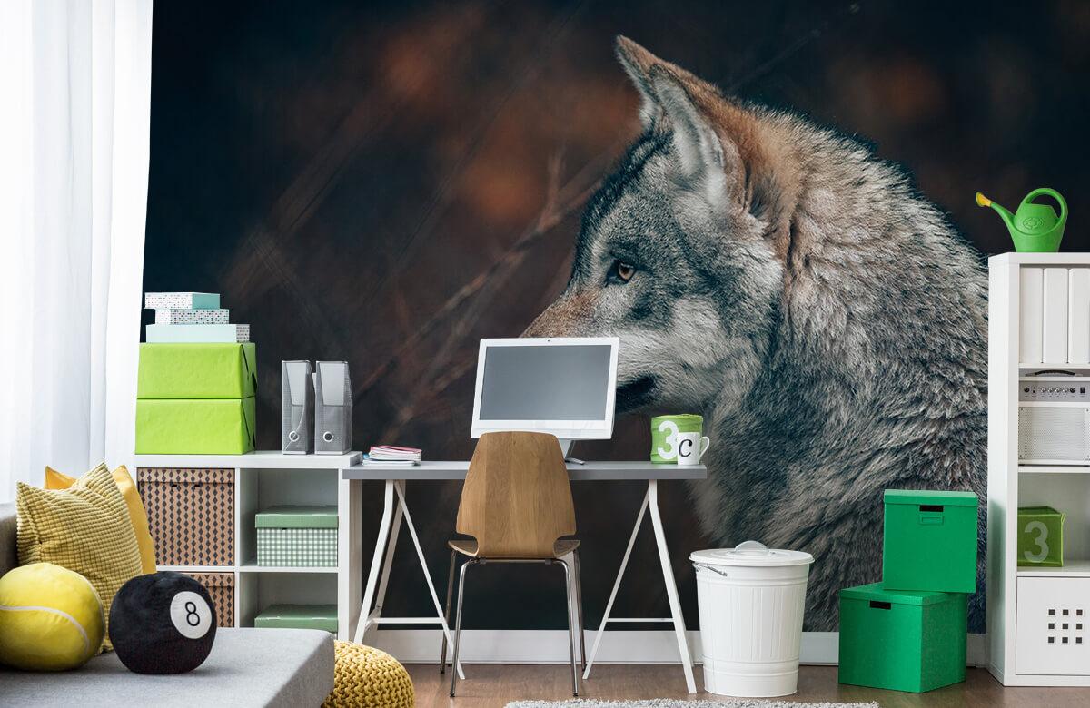 wallpaper Wolf 10