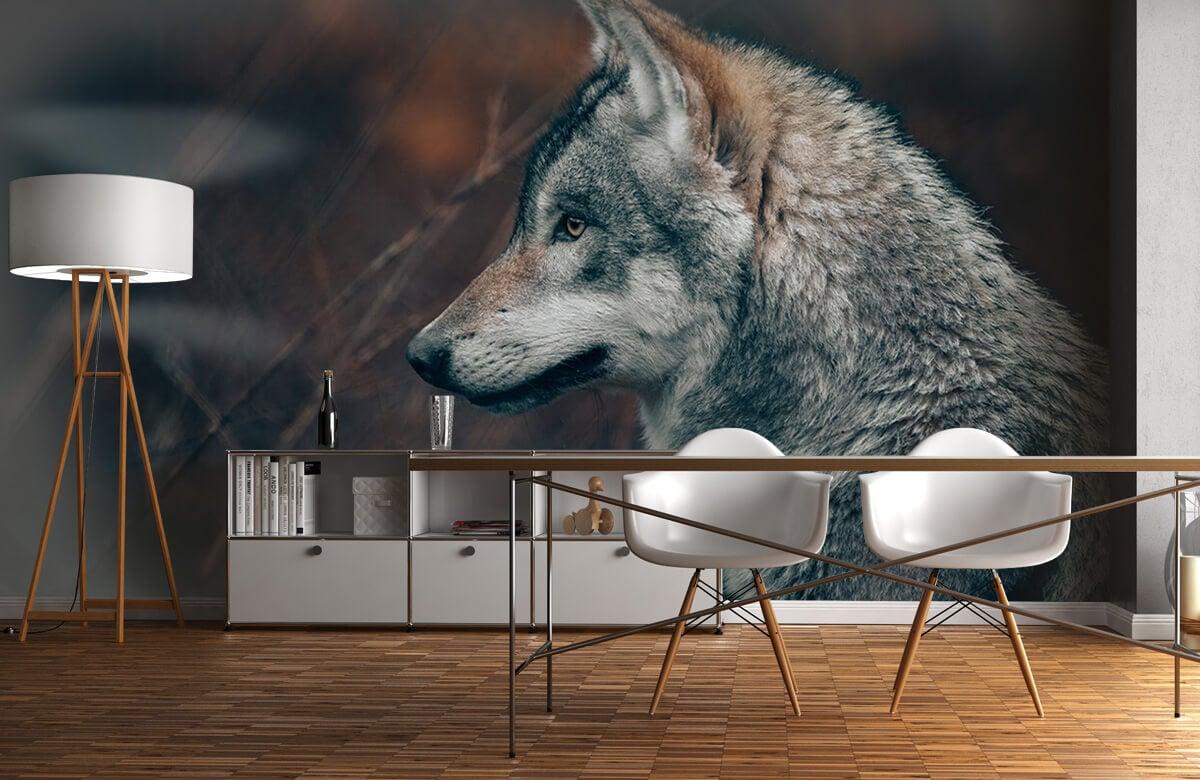 wallpaper Wolf 3