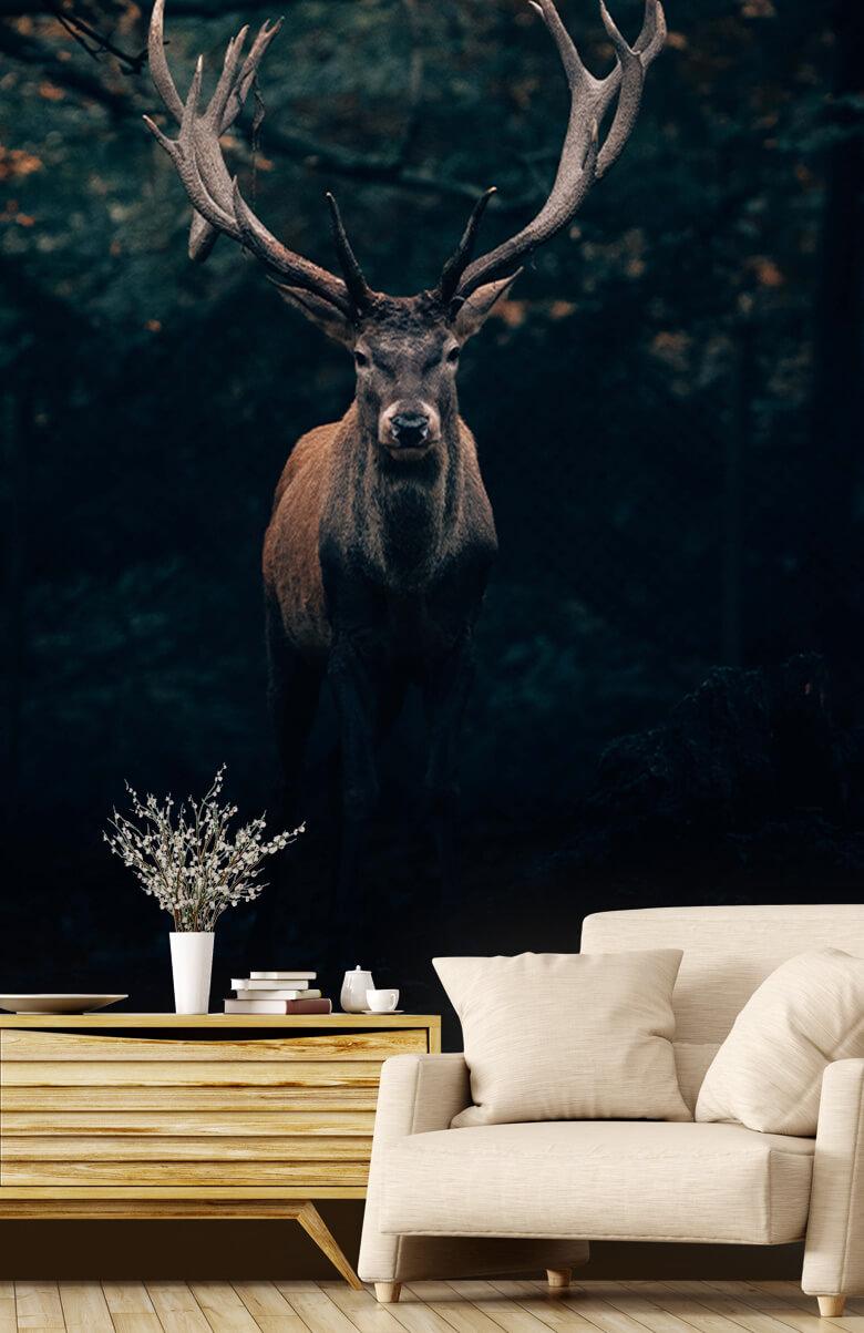 wallpaper Damhert in het bos 3
