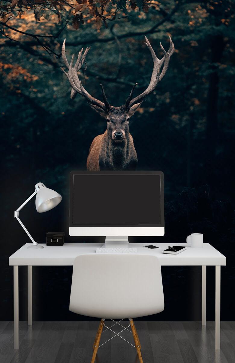wallpaper Damhert in het bos 12