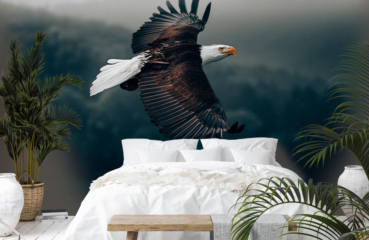 wallpaper Vliegende adelaar 2