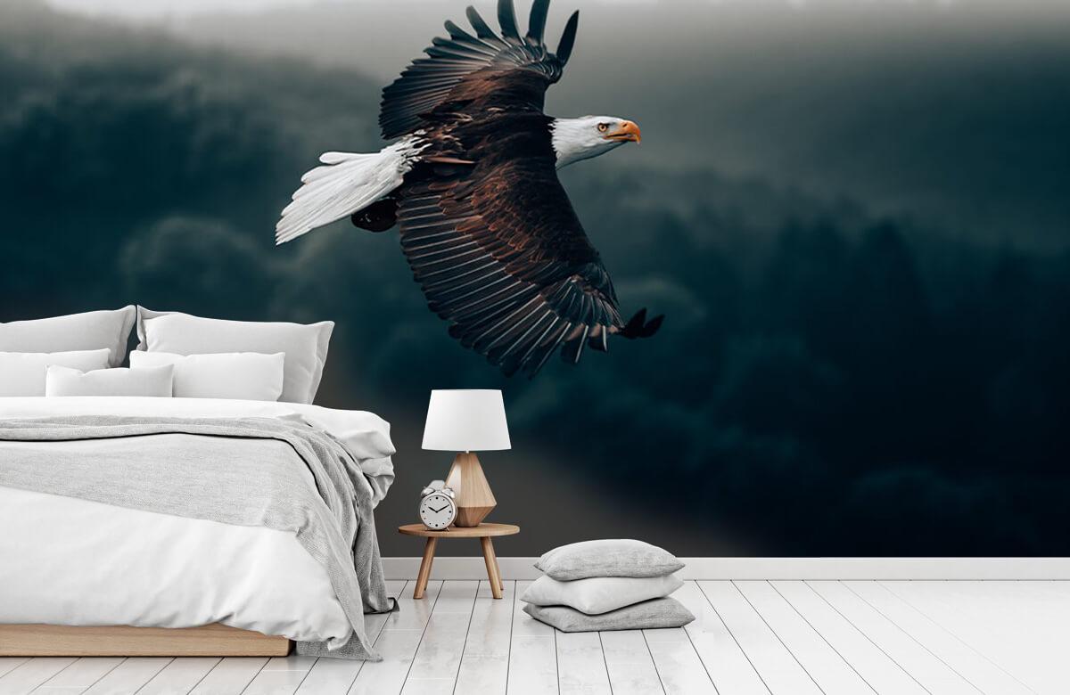 wallpaper Vliegende adelaar 9