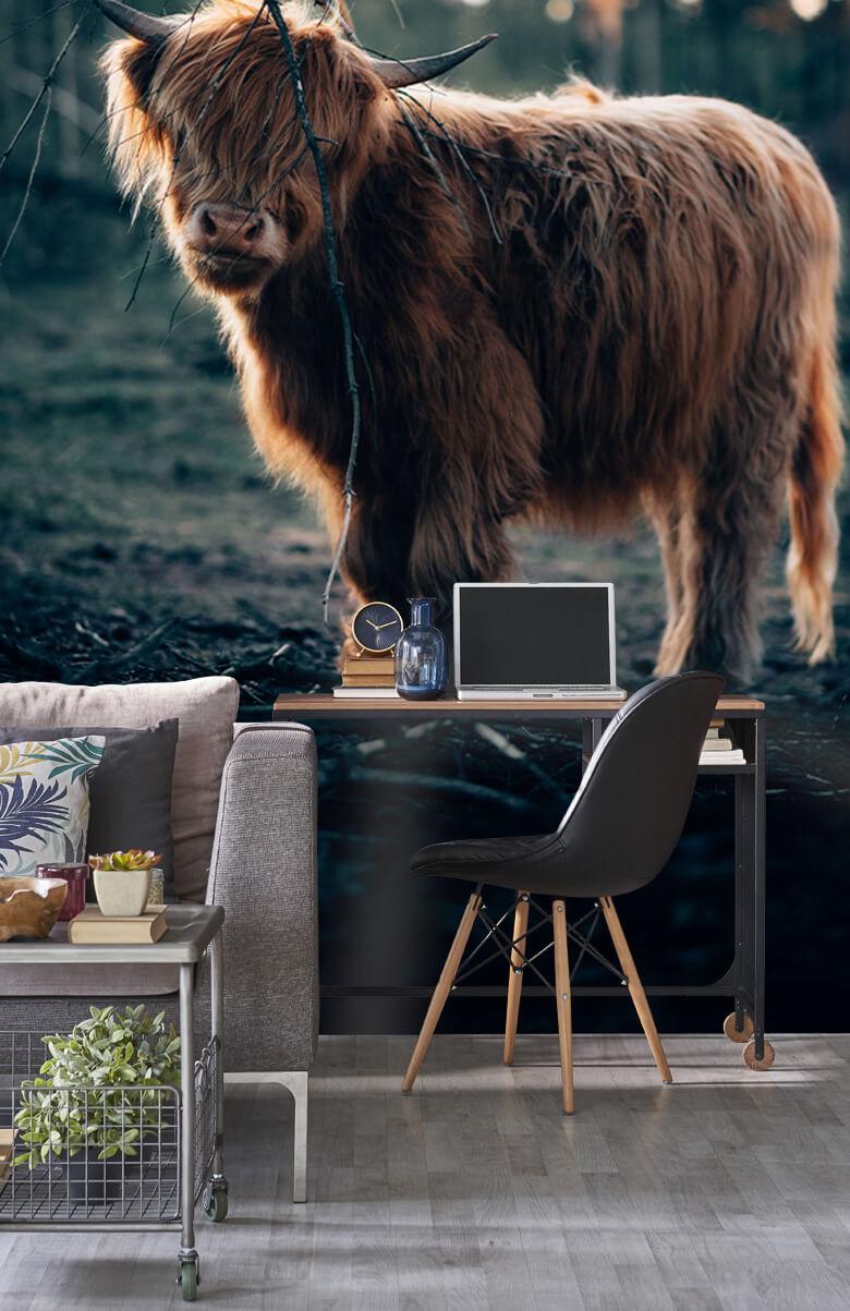 wallpaper Schotse hooglander aan de bosrand 12