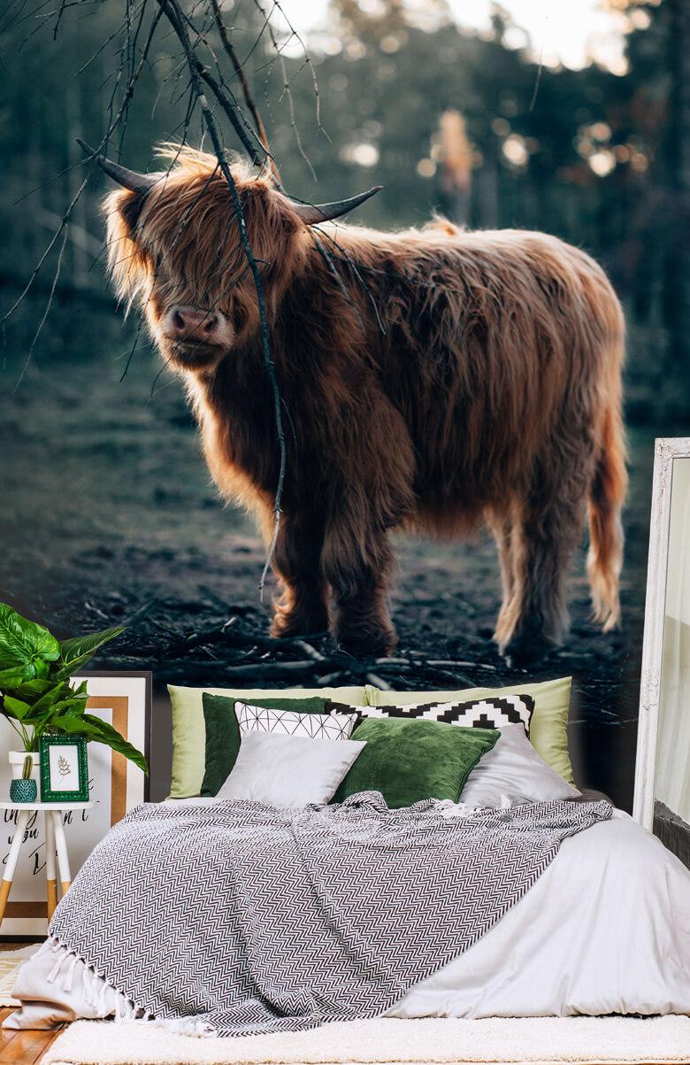 wallpaper Schotse hooglander aan de bosrand 7
