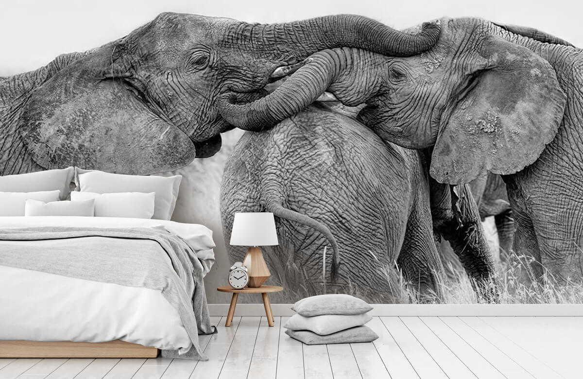 Elephant Playing 8