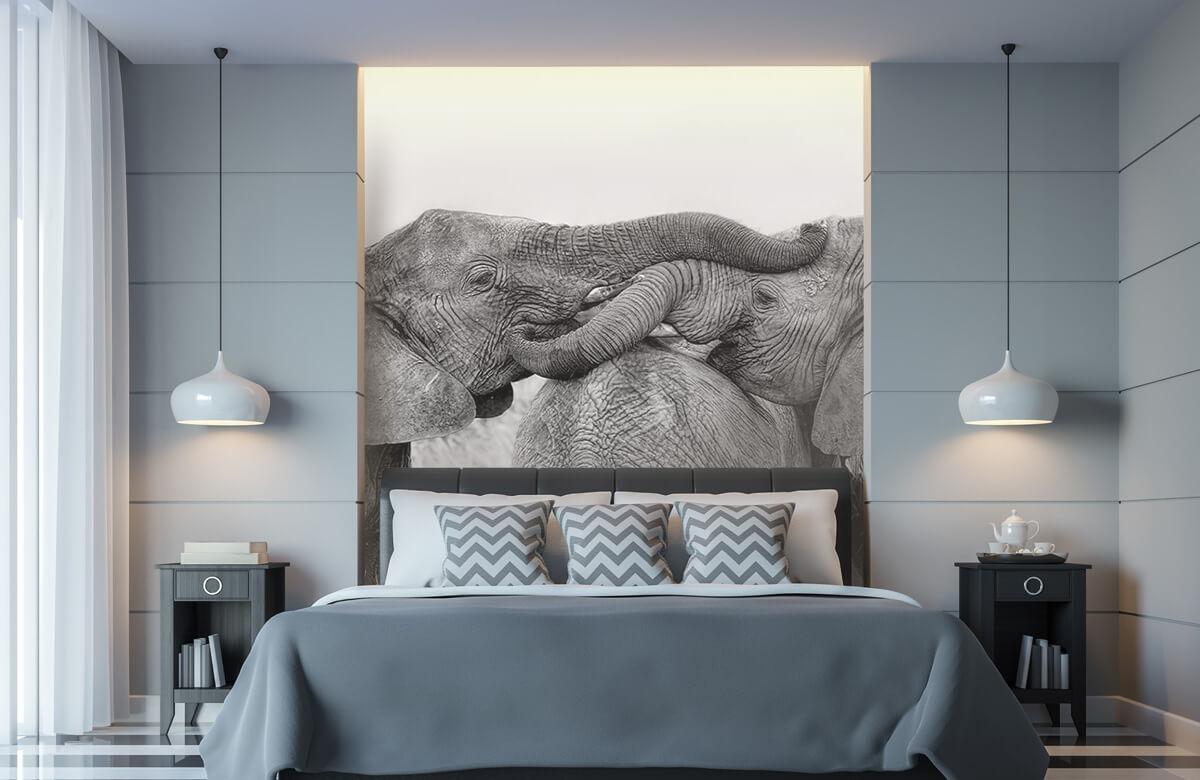 Elephant Playing 11