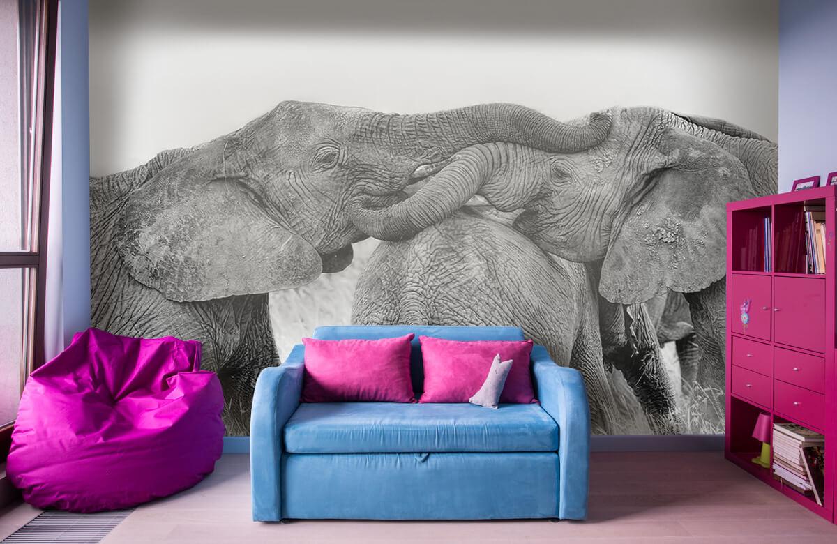 Elephant Playing 4