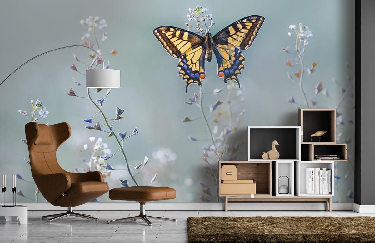 Swallowtail beauty 5
