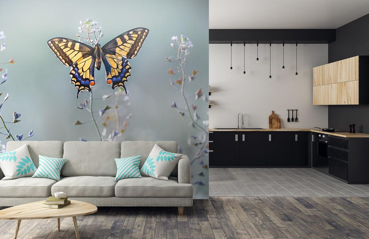 Swallowtail beauty 8
