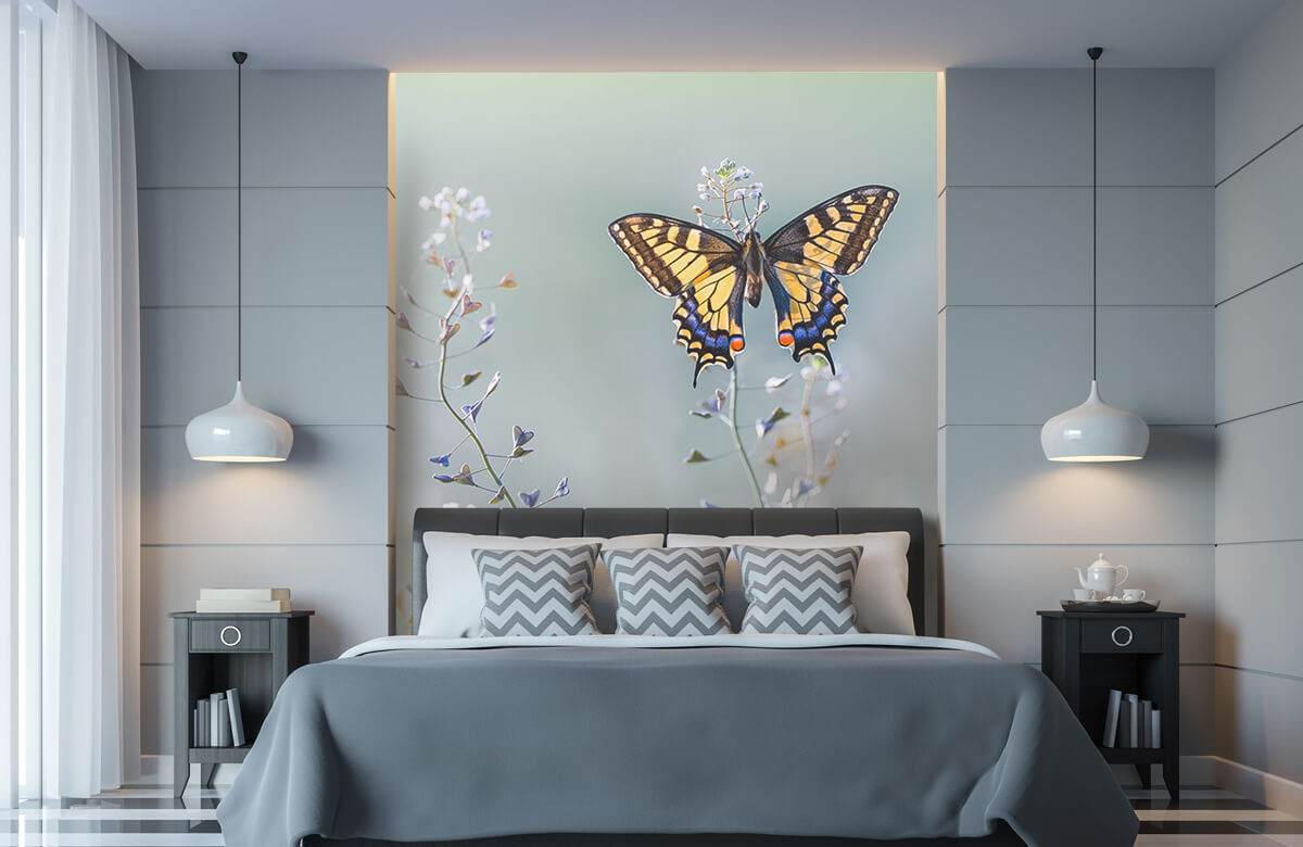 Swallowtail beauty 9
