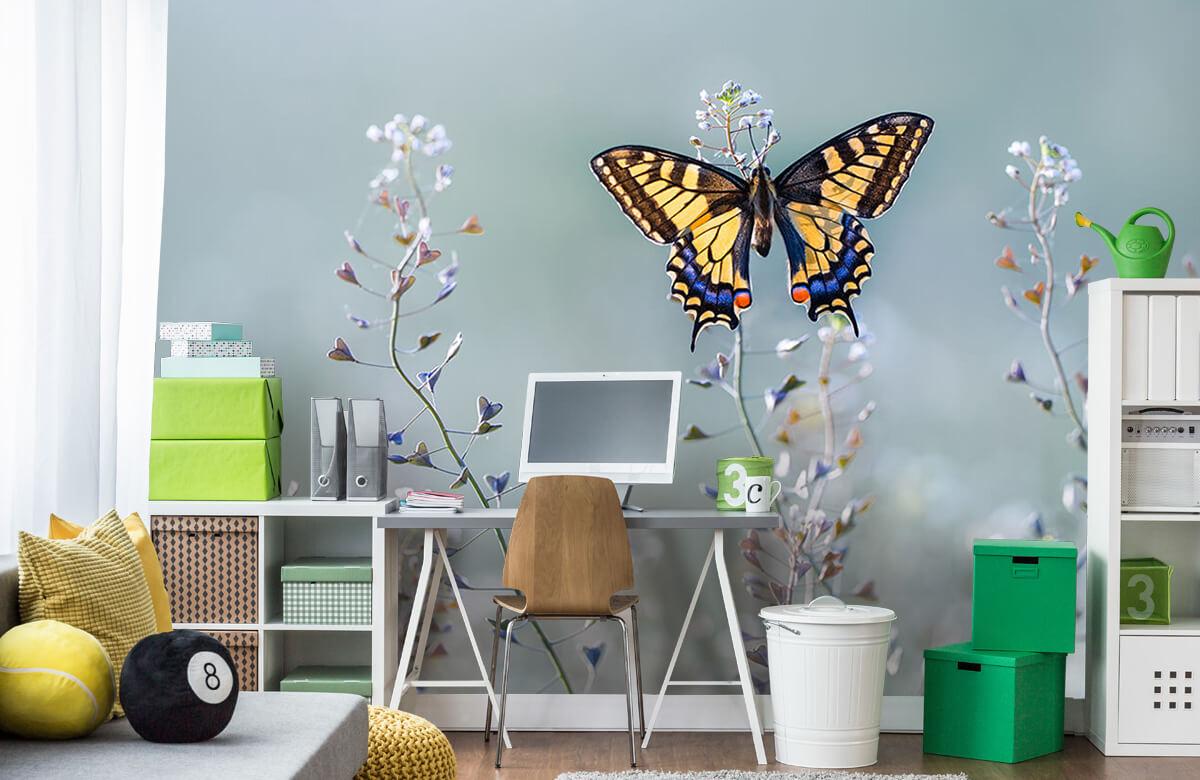 Swallowtail beauty 10