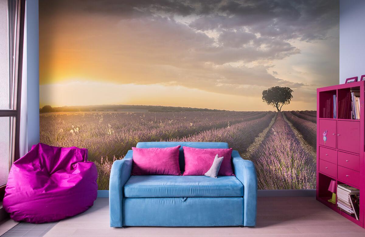 Destination lavender 3