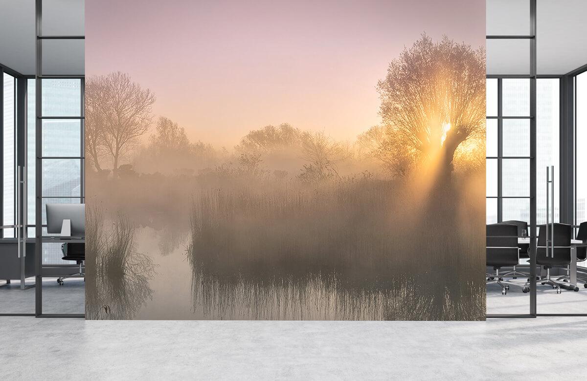 Silence morning 5