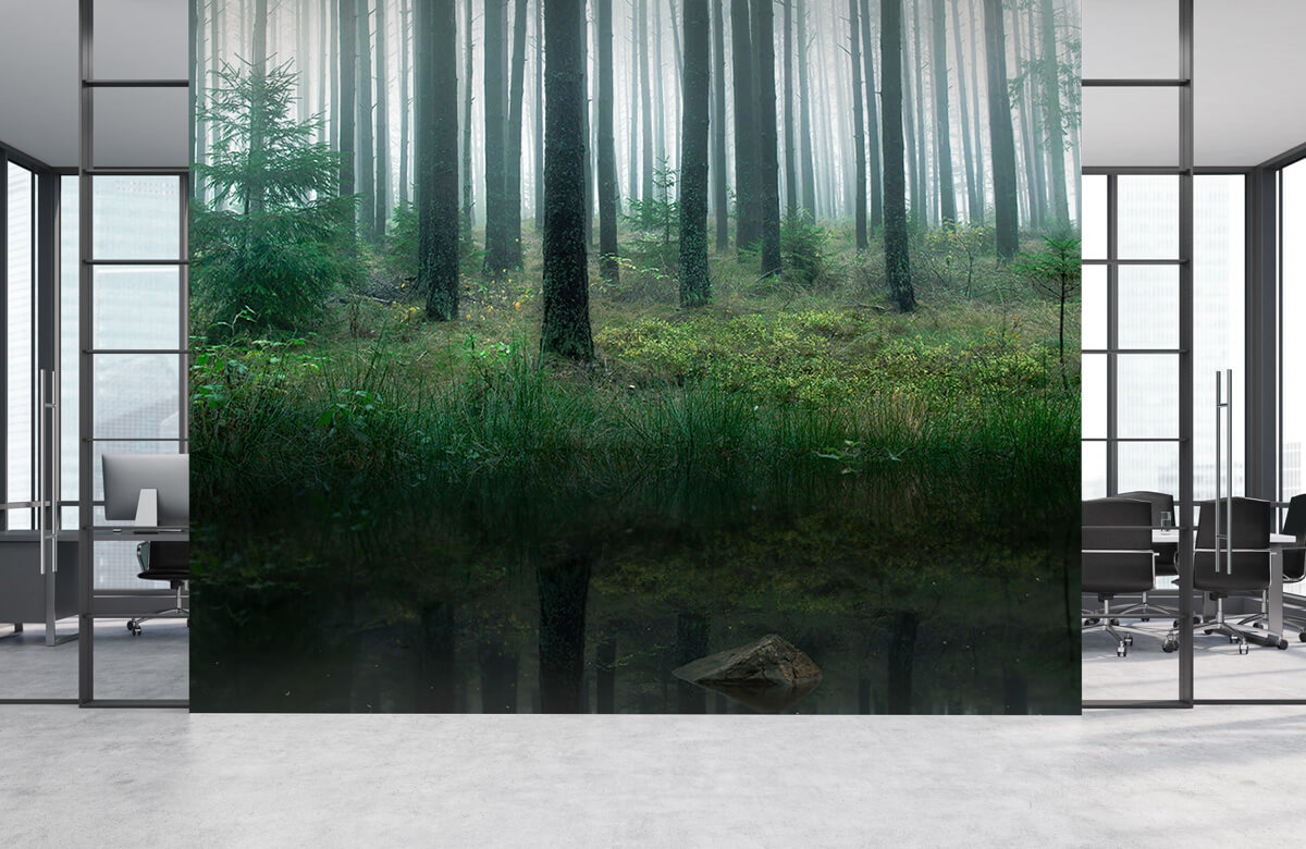 Lake in forest 7