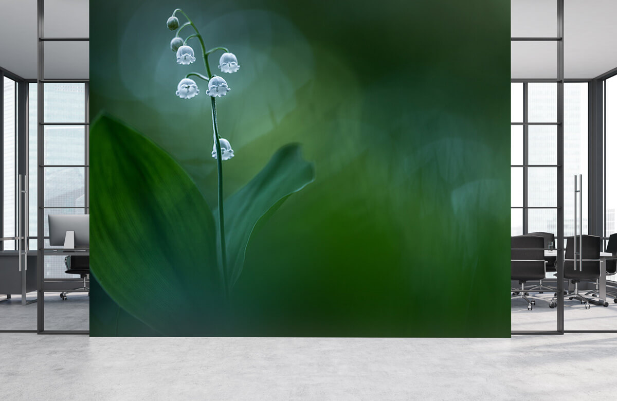 Lilly of the Valley 6