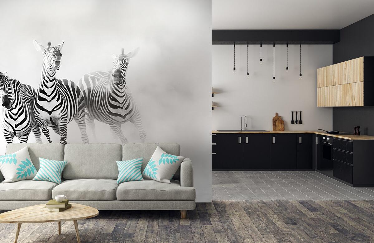 Zebras 9