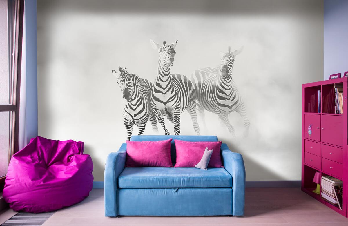Zebras 7