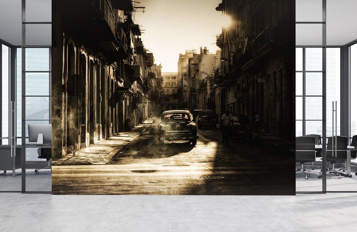 Mystic morning in Havana 2