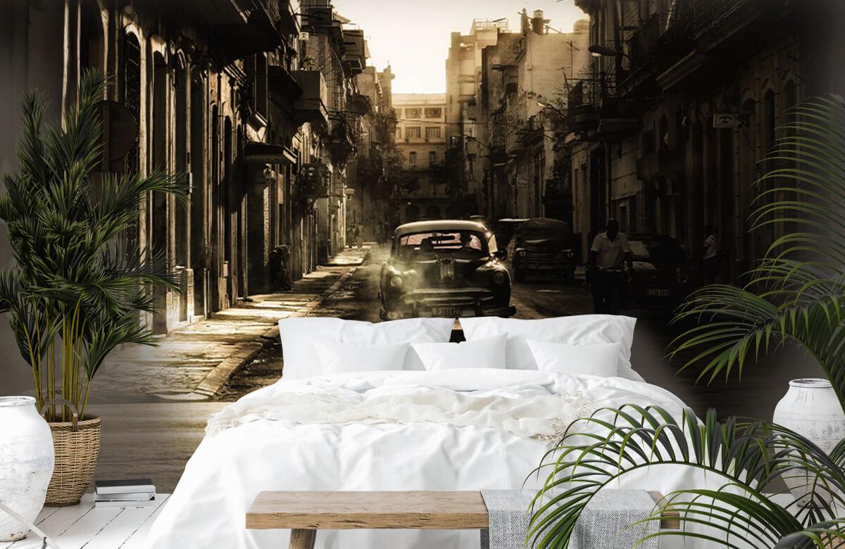 Mystic morning in Havana 7