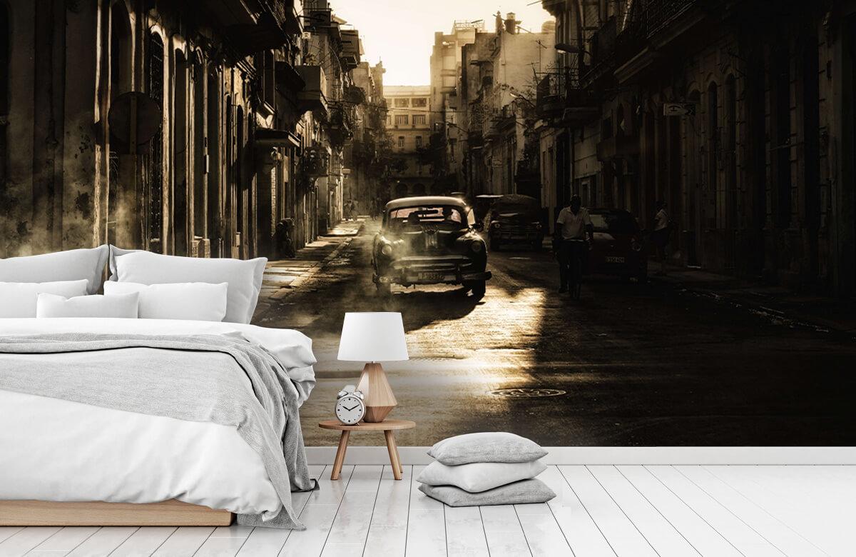 Mystic morning in Havana 5