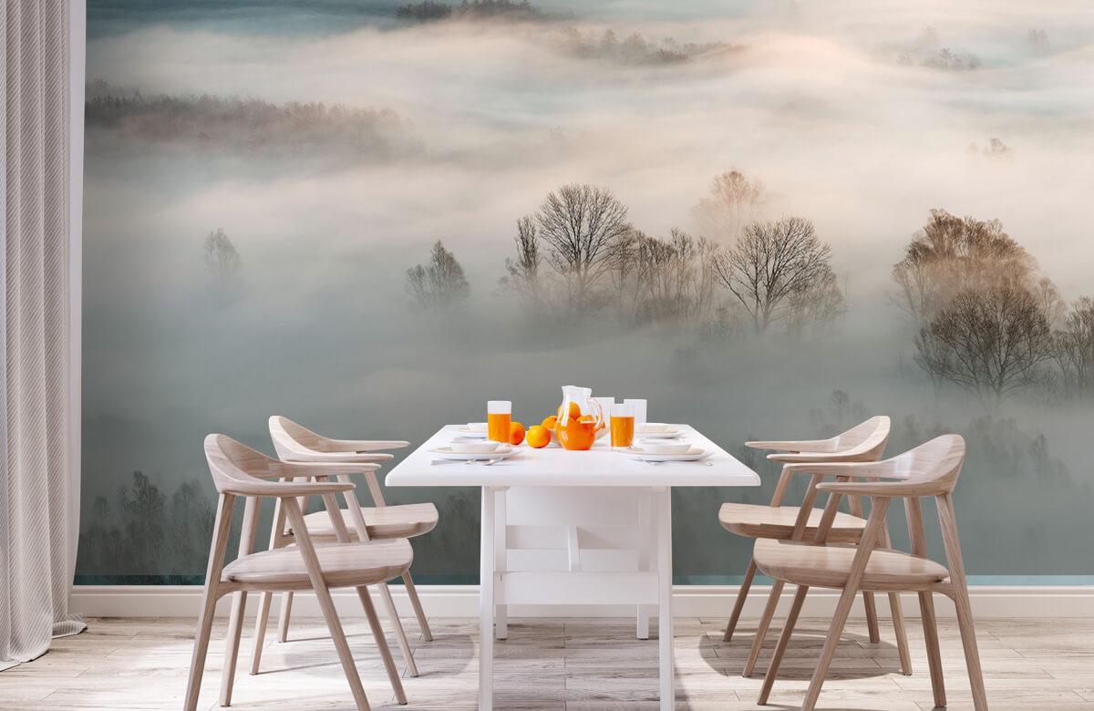 Winter fog 2