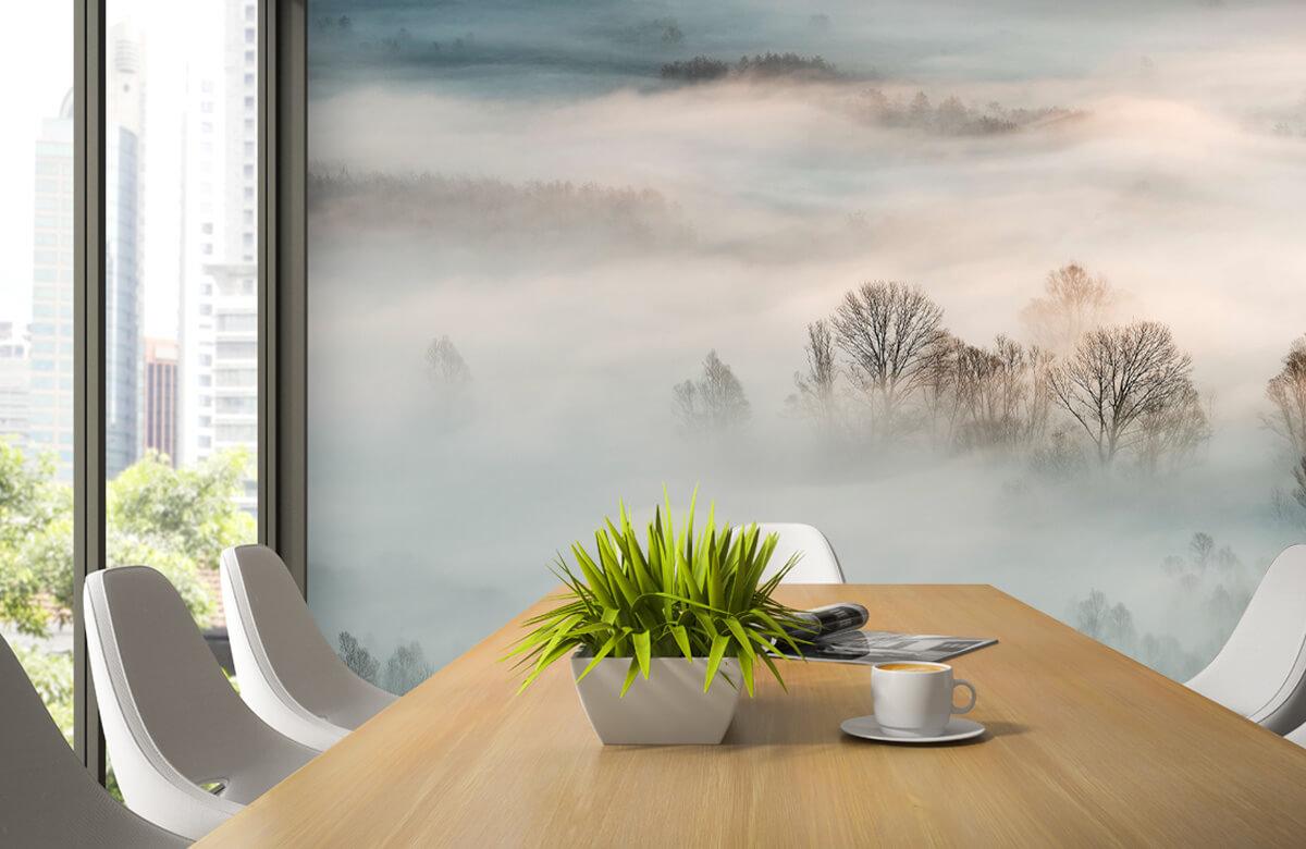 Winter fog 5