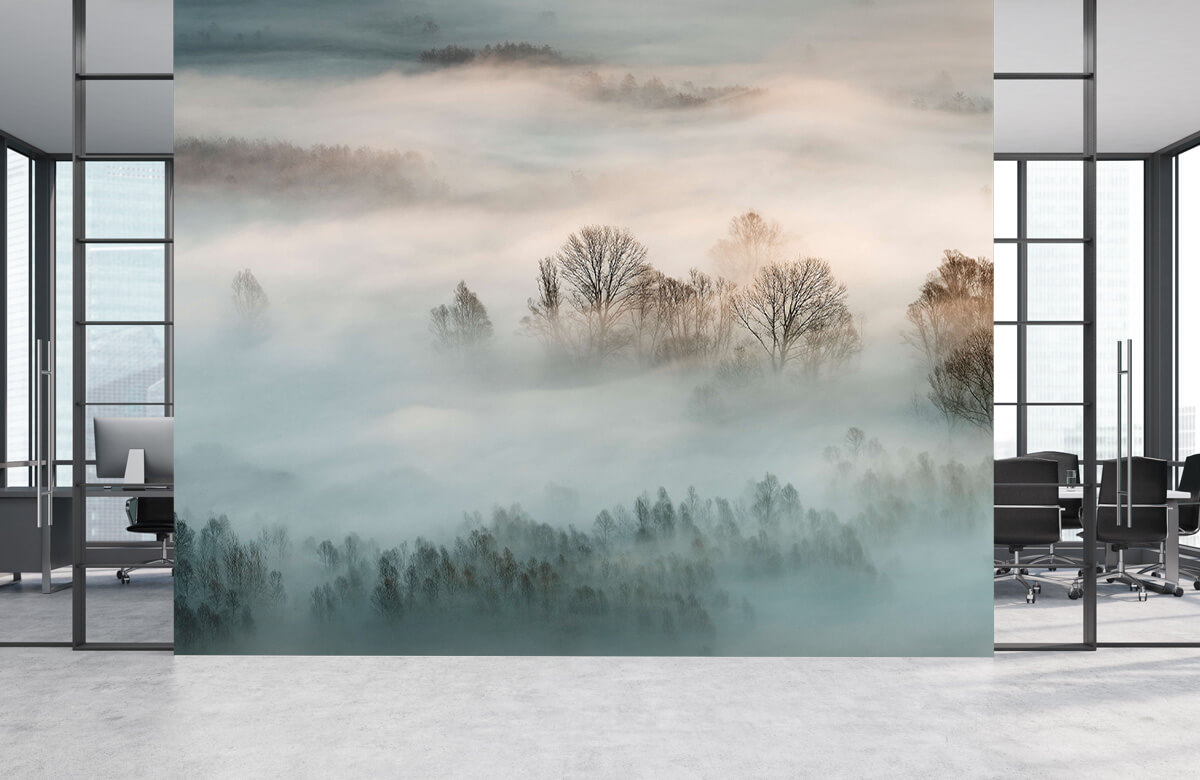 Winter fog 6