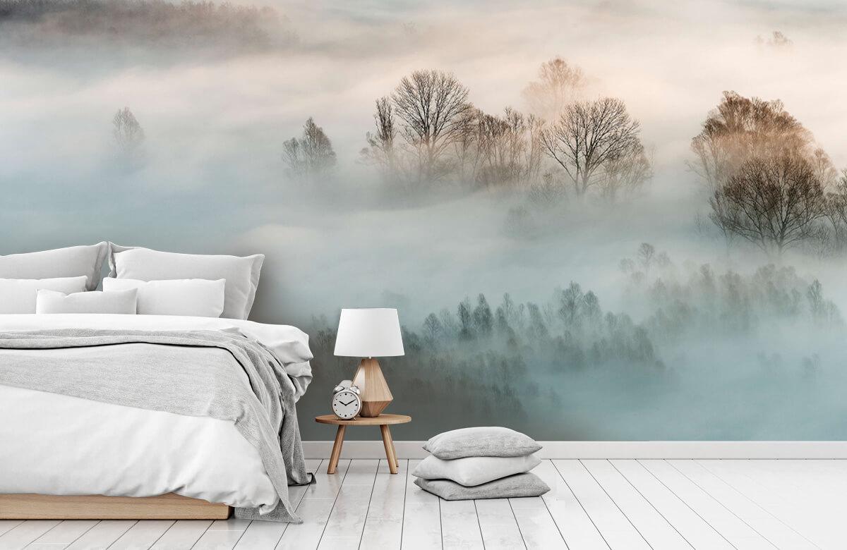Winter fog 8