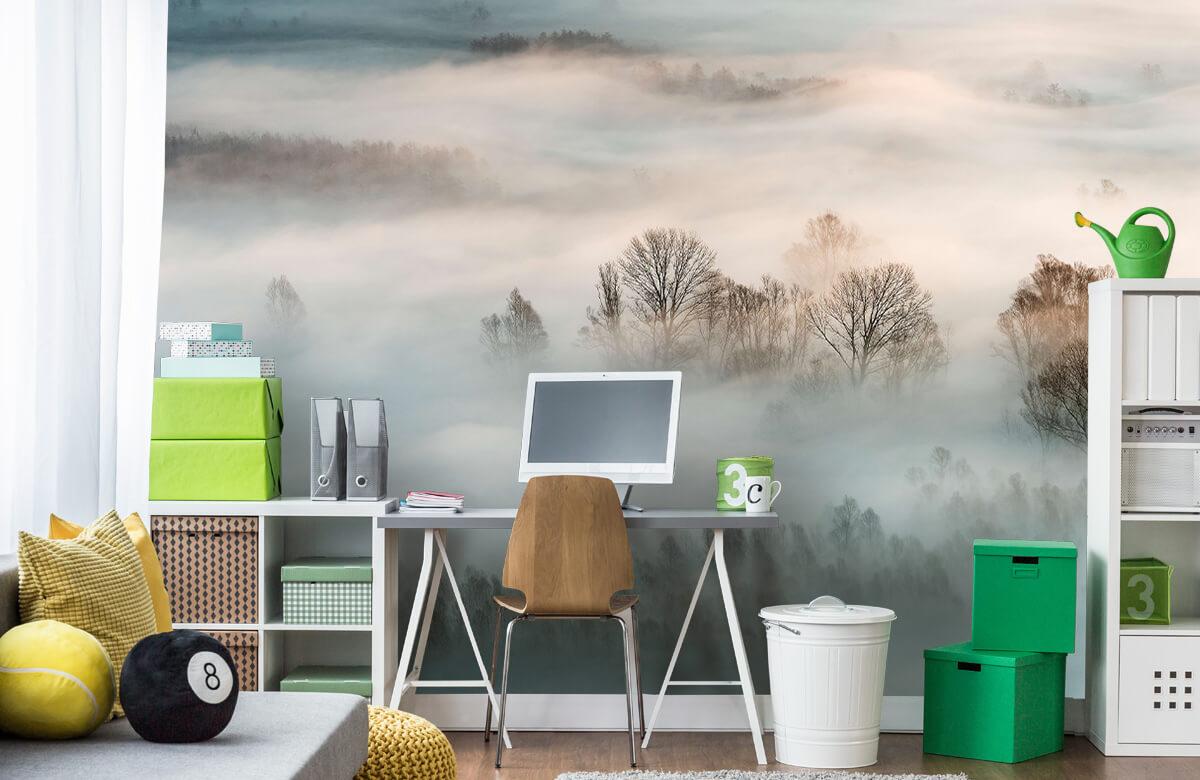 Winter fog 11