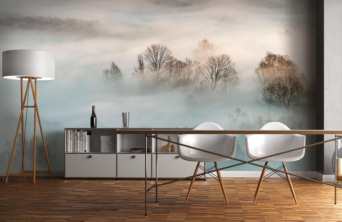Winter fog 1