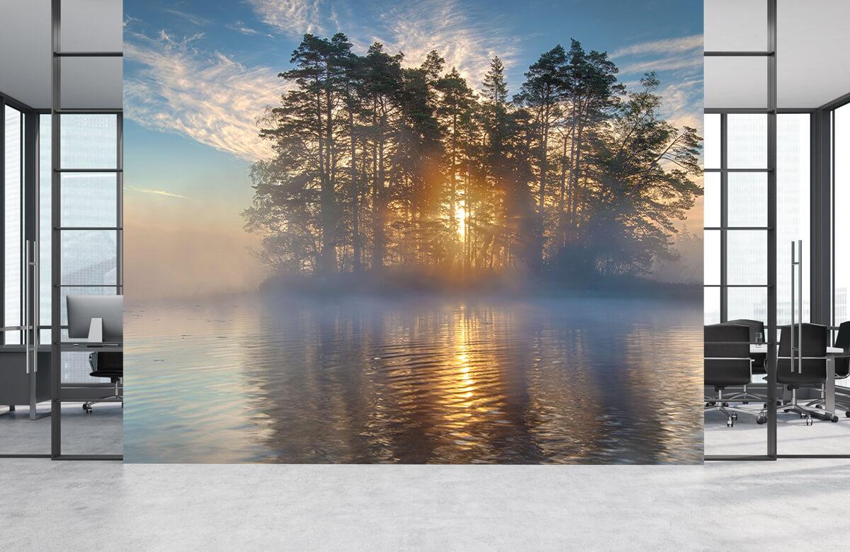Morning light 8