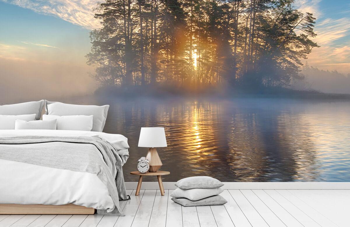 Morning light 11
