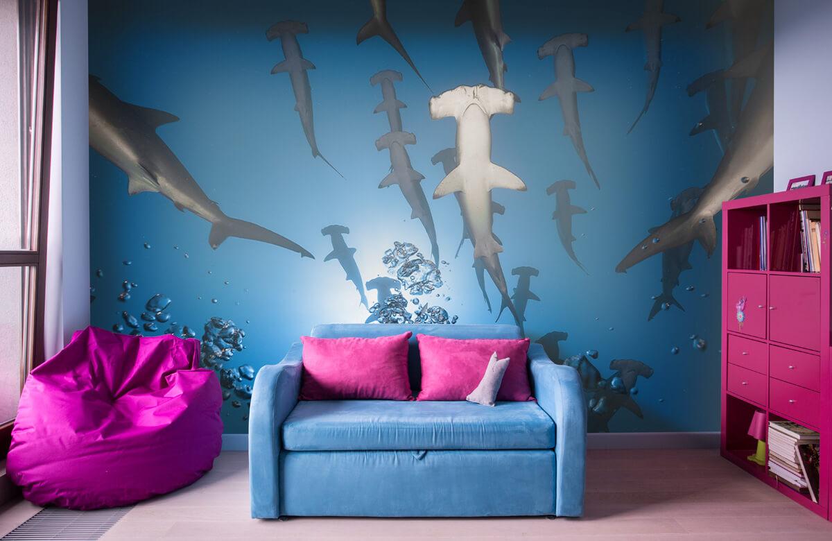 Hammerhead Shark 11