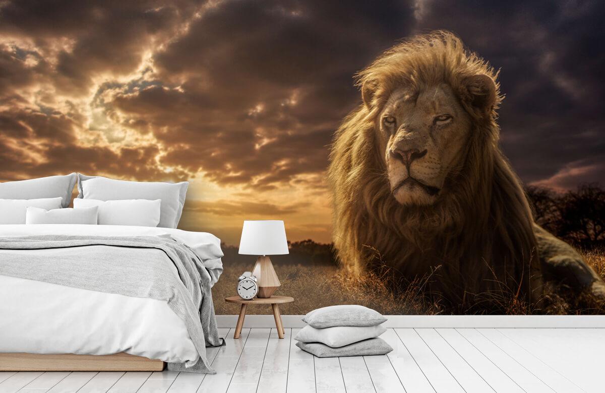Adventures on Savannah - The Lion King 5