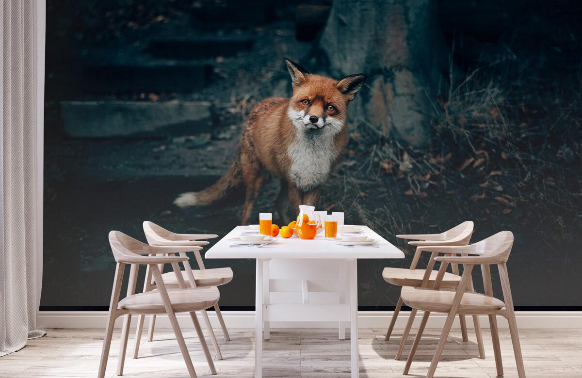 wallpaper Nieuwsgierige vos 4