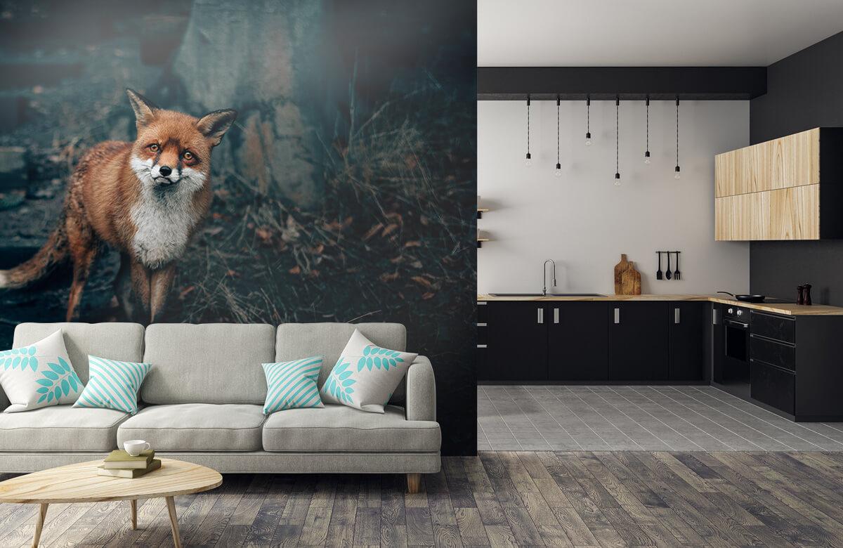 wallpaper Nieuwsgierige vos 10