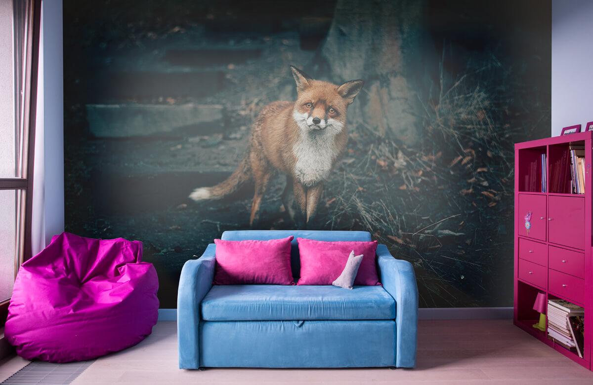 wallpaper Nieuwsgierige vos 3