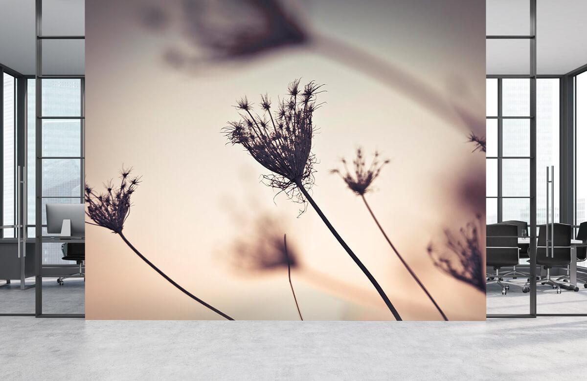 Silhouetten van planten 5