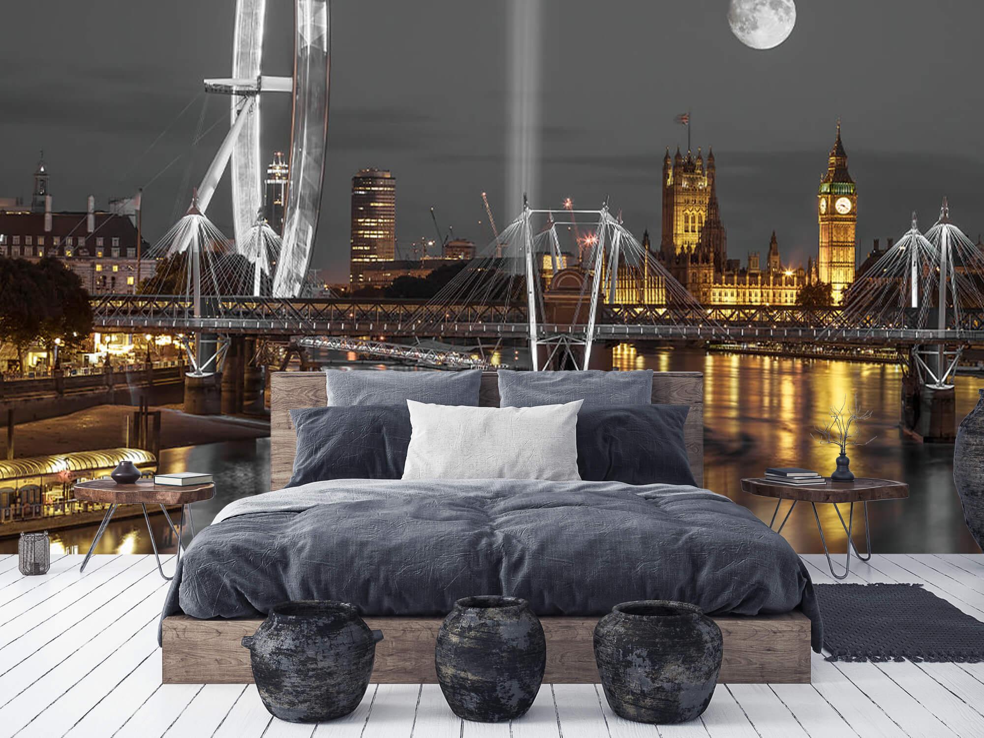 Westminster in de avond 7