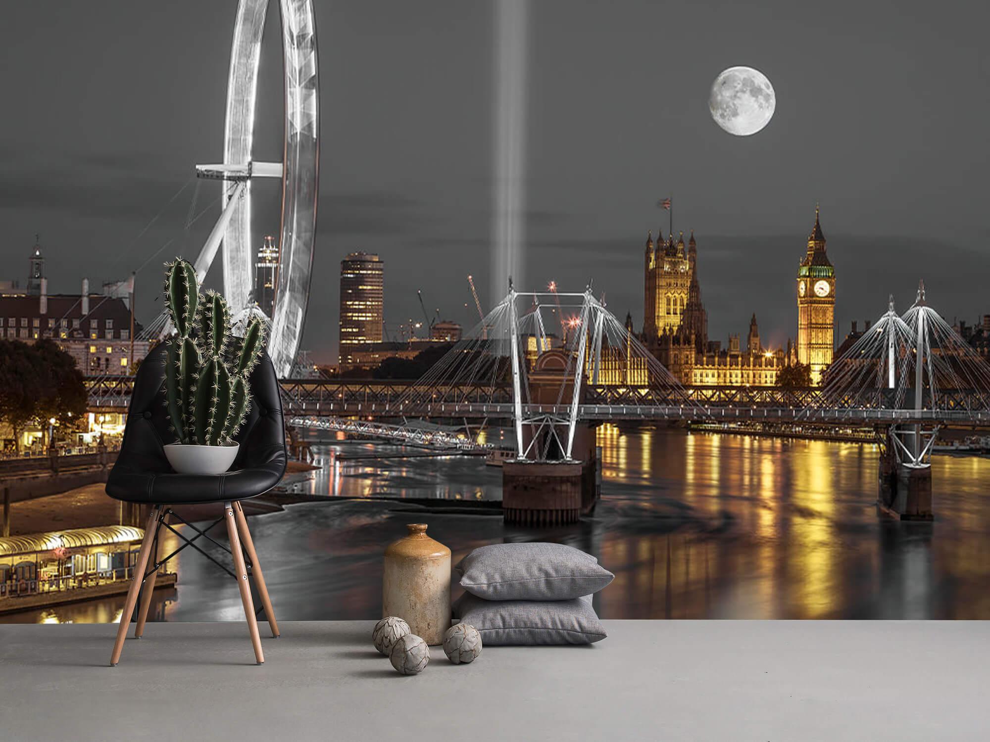 Westminster in de avond 17