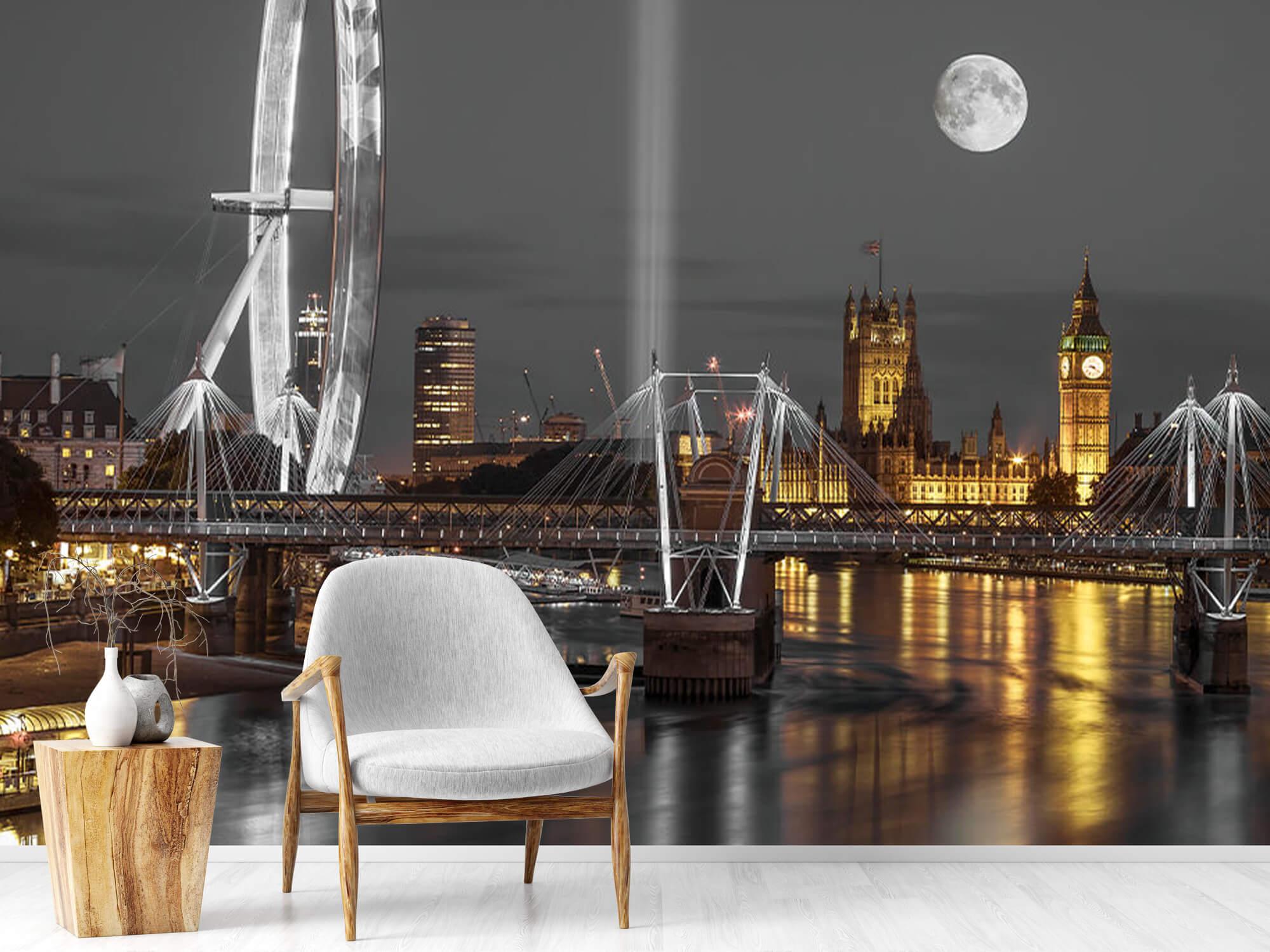 Westminster in de avond 19