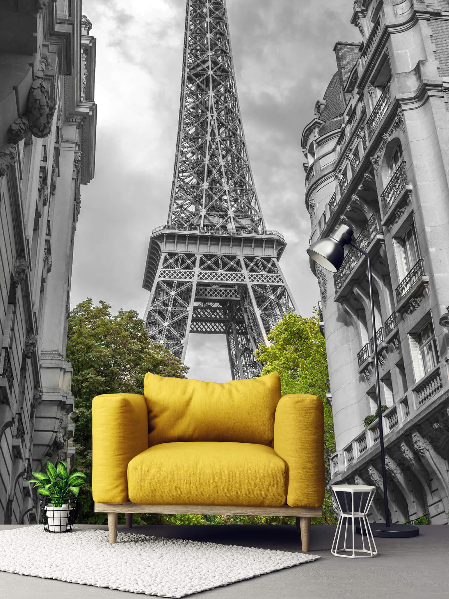 Eiffeltoren zwart-wit 3