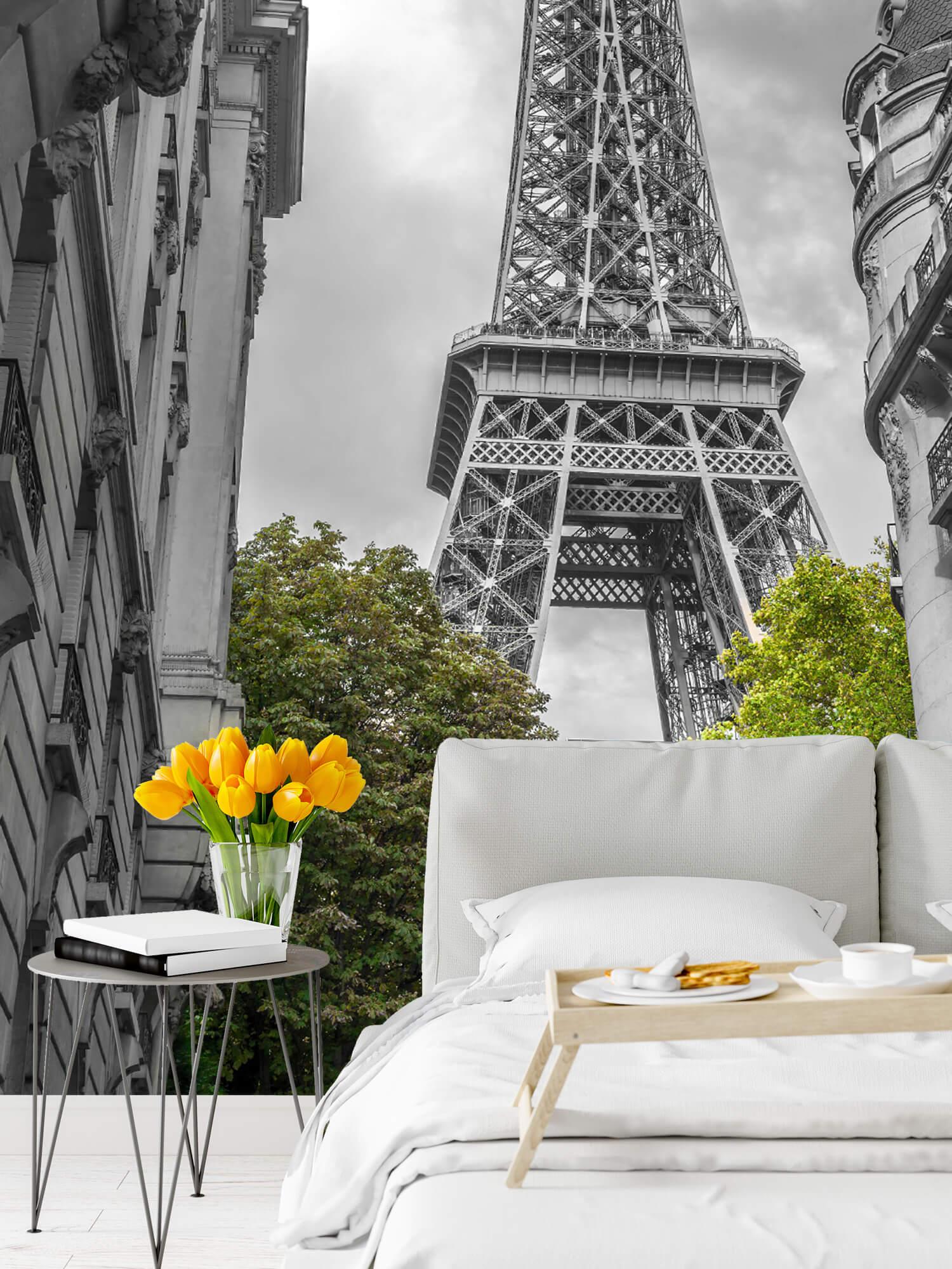 Eiffeltoren zwart-wit 2